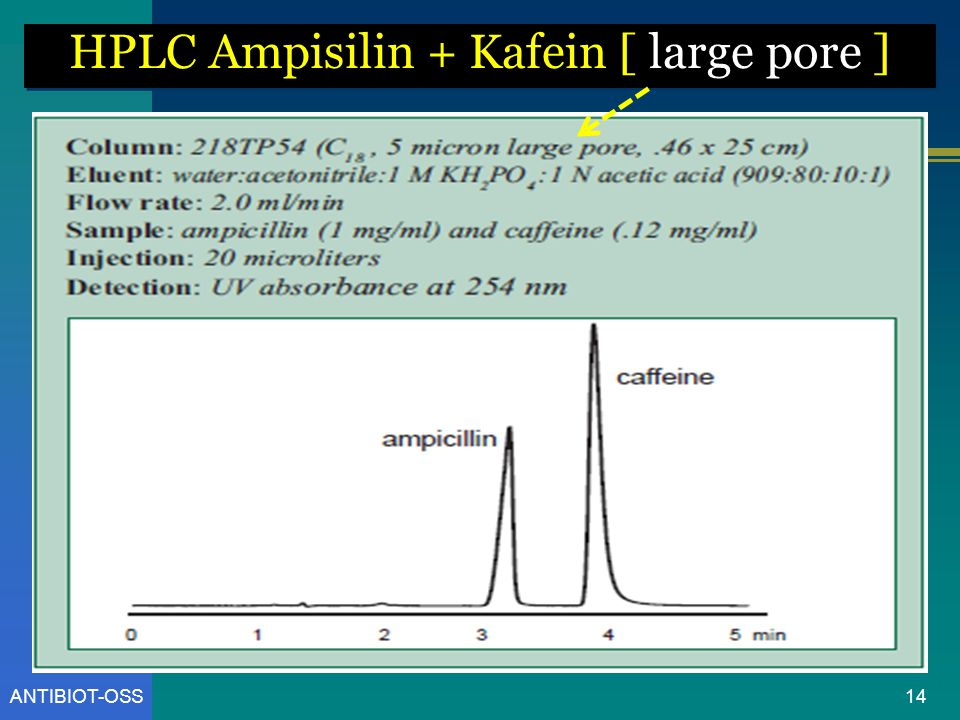 HPLC Ampisilin + Kafein [ large pore ]